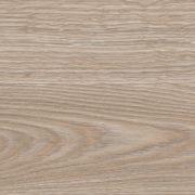 Дуб Индийский песочный арт-1628