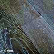 Дуб Толедо арт-2064